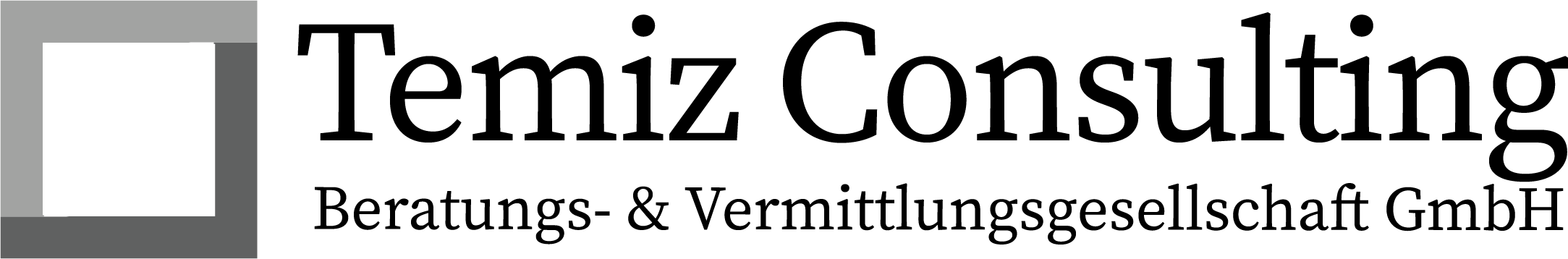 Temiz Consulting GmbH